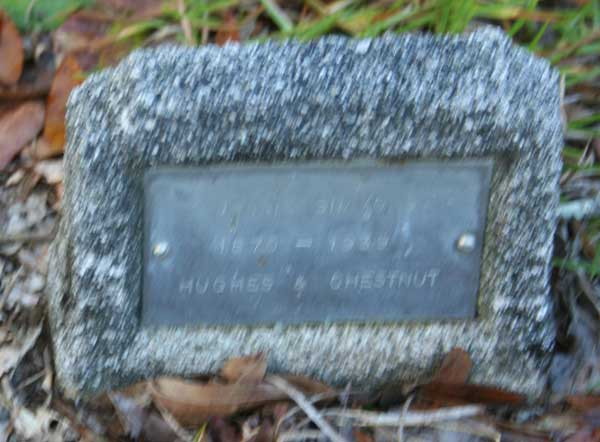 SIMMONS Gravestone Photo