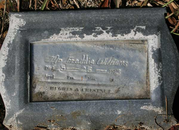FREDDIE WILLIAMS Gravestone Photo