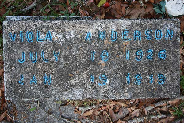 Viola Anderson Gravestone Photo