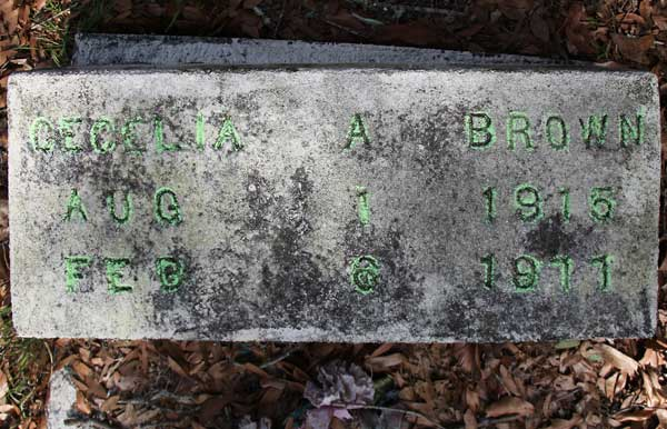 Cecelia A. Brown Gravestone Photo