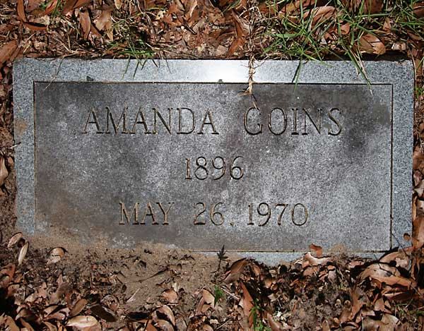 Amanda Goins Gravestone Photo