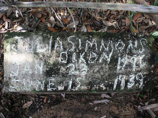 Julia Simmons Dixon Gravestone Photo
