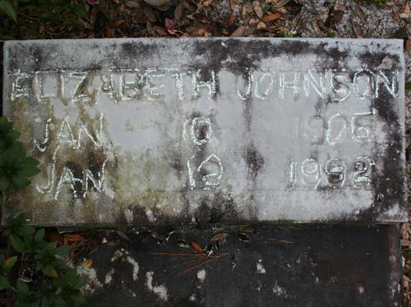 Elizabeth Johnson Gravestone Photo