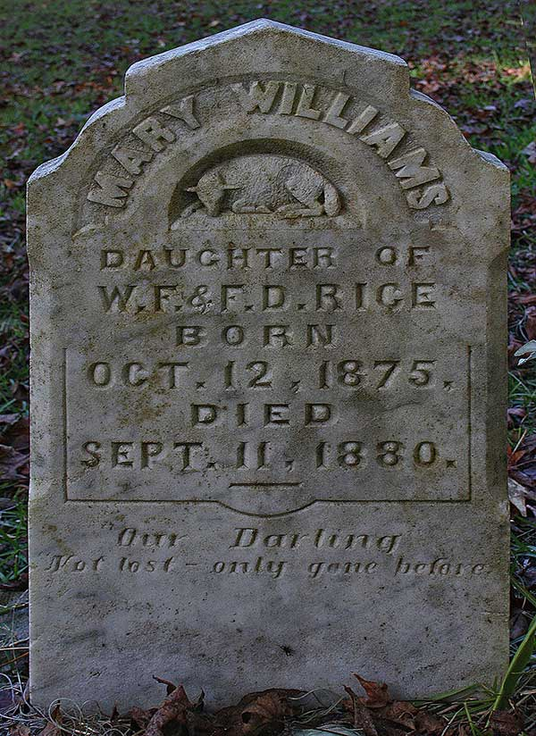 Mary Williams Rice Gravestone Photo