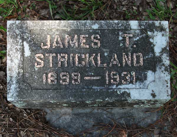 James T. Strickland Gravestone Photo