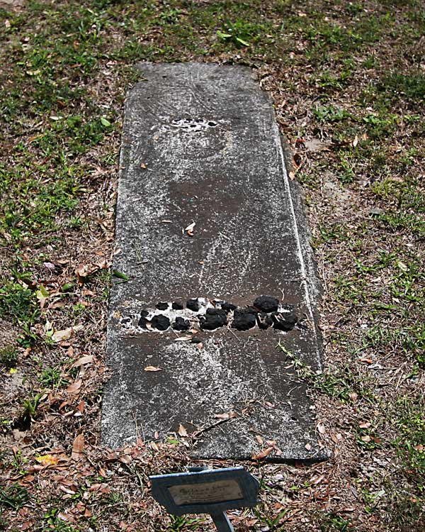 Lena Johnson Gravestone Photo