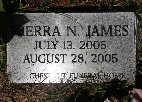 Sierra N. James Gravestone Photo
