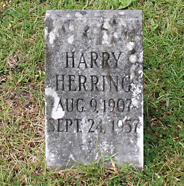 Harry Herring Gravestone Photo