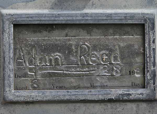 Adam Reed Gravestone Photo