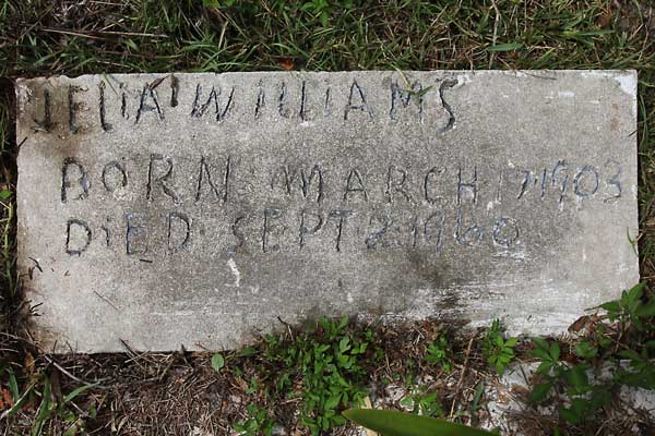 Jelia Williams Gravestone Photo