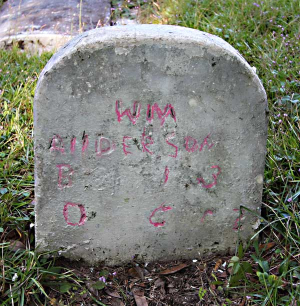 Wim Anderson Gravestone Photo