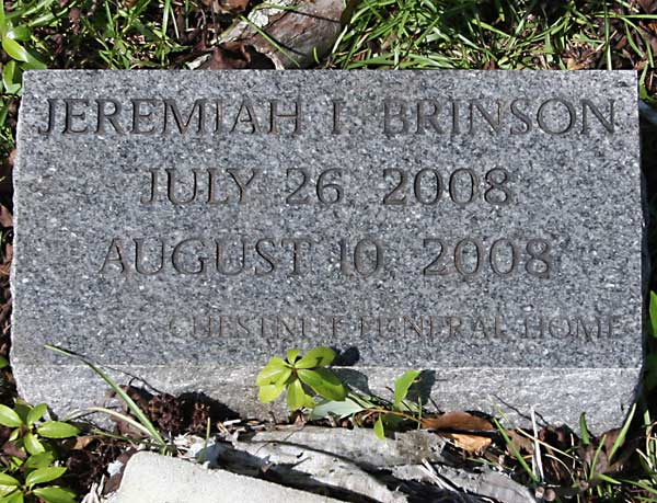 Jeremiah I. Brinson Gravestone Photo