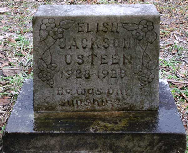 Elish Jackson Osteen Gravestone Photo