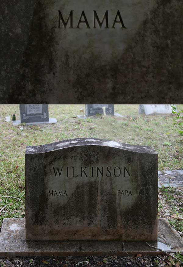 Wilkinson Gravestone Photo
