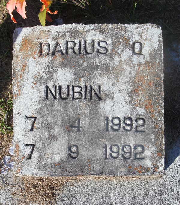 Darius Q? Nubin Gravestone Photo