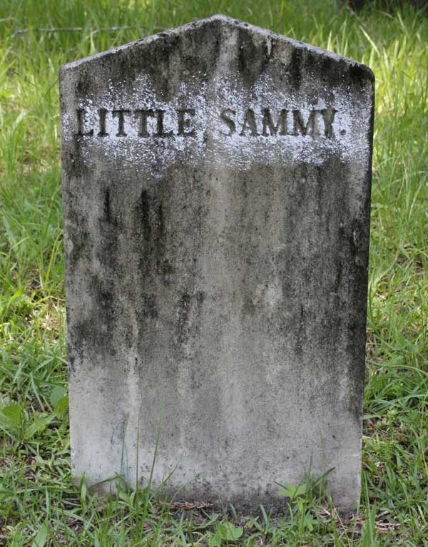 Little Sammy Burts Gravestone Photo