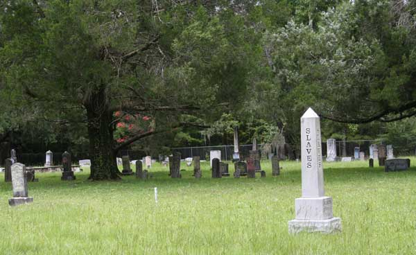 Sectional View Gravestone Photo