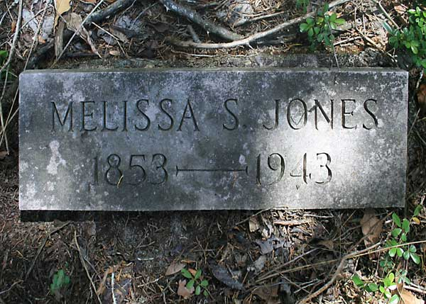 Melissa S. Jones Gravestone Photo