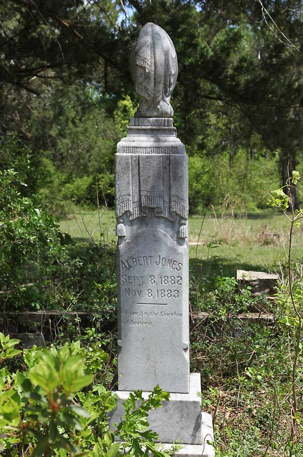 Albert Jones Gravestone Photo